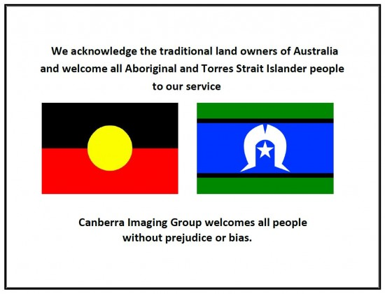 aboriginal and torres state island flag